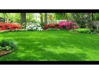 Yorvik garden services