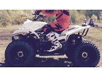 Quadzilla 100cc proshark