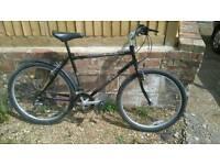 19 in frame bike