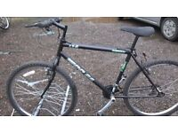 ADULT LADIES AND GENTS MOUNTAIN BIKES 4 OFF ALL IN GOOD CONDITION ready to go