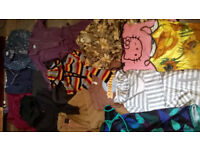 Big bundle of LADIES clothes, great condition, some new!