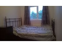 Double Room Available in Cute Semi in Quiet Convenient Area