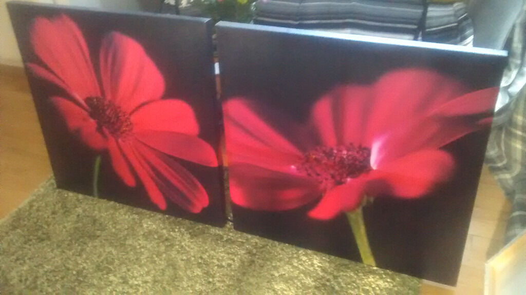 Pictures/Canvas - black backround with bright red flowers
