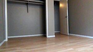 Newly renovated 2BD for just $1085 plus free internet!!! SD $350 Edmonton Edmonton Area image 6