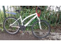 Giant Bike for Sale- Perfect for the city (Free helmet and Lock)