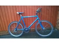 Large Mans Mountain Bike....Good Value £55.00....For the Taller Man or Youth