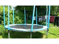 Trampoline on offer - free!