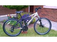 Claud Butler Mountain Bike..Lightweight Alloy Frame..Front Suspension and Disc Brake..21 Gears..Good