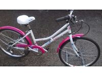 GIRLS MOUNTAIN BIKE NEW CONDITION 14 IN FRAME 24 INCH WHEELS