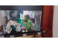 Fish Aquarium fish tank for sale ..