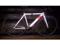 Sku 19 inch single speed fixie bike (not fixed) excellent central London bargain