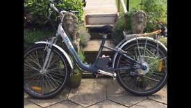 Windsor power cycle power assisted ( open to offers )