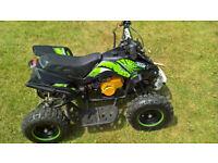 mini quad bike 49cc big bore