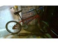 BMX Bike Apollo in beautiful Excellent condition QUICK SALE