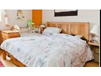 Double bedroom in Clapham Junction