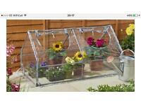 Cloche greenhouse