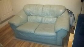 Light Green Leather 2-seater sofa