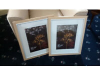Photo Picture Frames for sale