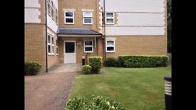 Double room to rent in luxury top floor flat
