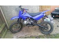 Z155 pit bike