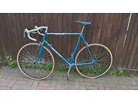 Raleigh sports bike