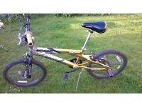 BMX Rip curl in gold £60