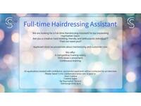 Full time hairdressing apprenticeship available...immediate start
