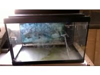 Fish Tank 2ft by 1.25ft (24inch x 15inch) depth 1.08ft (13inch).
