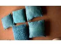 Five teal cushions