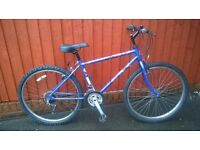 Raleigh IMIA Youth or Mans Mountain Bike .... Super Value ... £49....