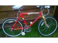 brand new emmelle tough rider girls bike