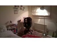 Double room in friendly professional house on Whiteladies Road