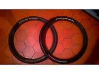 Specialized Fast Trak LK Mountainbike Tires - 26inch x2