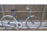 nice ladies universal la riviera retro bike