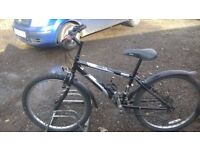 BOYS OR GIRLS MOUNTAIN BIKE RALIEGH SUIT 6 TO 12 YEAR OLD good condition