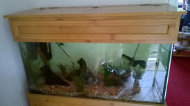 Aquarium Fish Tank, with pine effect cabinet