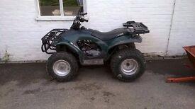 Eton Challenger 150cc farm quad quad bike