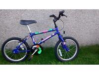 Raleigh Dragon boy's bike