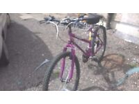 MOUNTAIN BIKE ADULT FULL SIZE LADIES 26 IN WHEELS 18 INCH FRAME