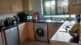 2 Bed Council House Billericay wants 3 Bed House London/Essex