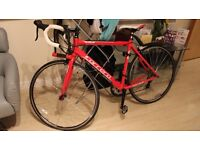Carrera Zelos Bike - Like New used 4/5 times