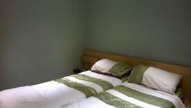 Ikea Malm large bedframe with detachable bedside units