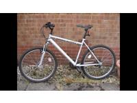 Townsend Prairie mountain bike
