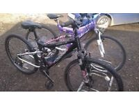 ADULT LADIES AND GENTS MOUNTAIN BIKES good cdondition £35 EACH OR £60 X2