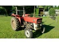 Massey Ferguson MF135 Tractor