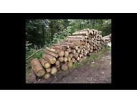 Wanted unprocessed logs and timber Wanted for firewood unprocessed logs / felled trees