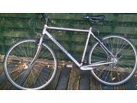 ridgeback montinbike