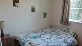Quiet bright spacious double room in 2 bed flat Hilmorton, Rugby