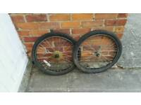 """Pair 24"""" mtb wheels and tyres"""