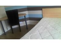 Spacious DOUBLE ROOM off Newmarket Road for rent